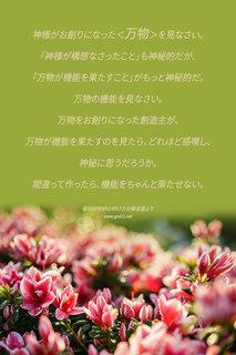 20150530鄭明析先生の明け方の箴言.jpg